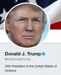 partial screengrab of Trump Twitter page